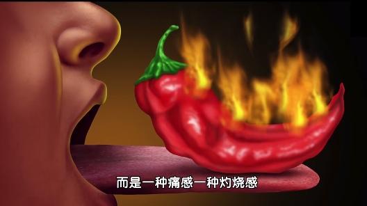为什么那么多人喜欢吃辣